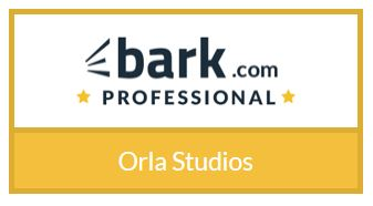 bArk pro